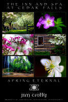 Spring Eternal at Inn at Cedar Falls PosterPrint by Jim Crotty