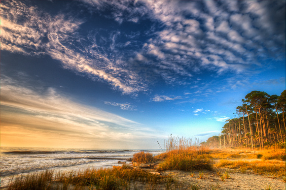 Hunting Island Photography by Jim Crotty 2