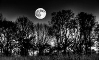 October Dusk at Sugarcreek Black and White by Jim Crotty