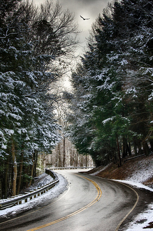 January Road by Jim Crotty